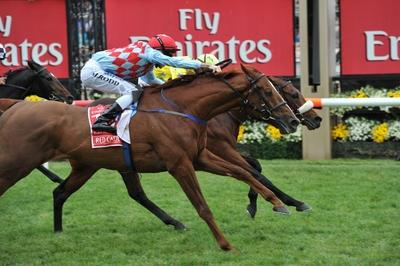 MELBOURNE CUP, photo finish