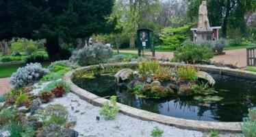 Exploring the Chelsea Physic Garden in London
