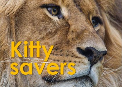 Travel_Deals_Kitty_Savers