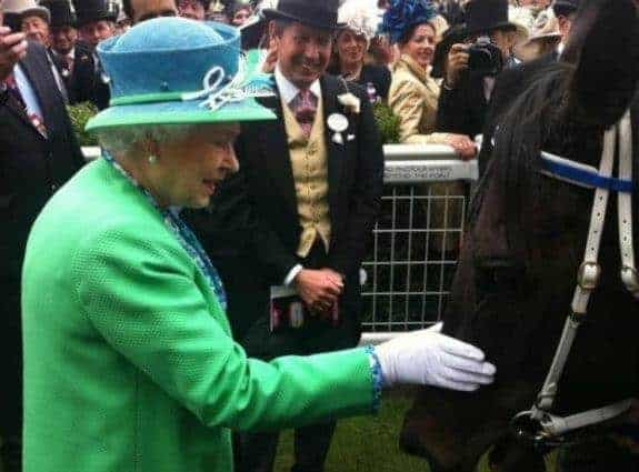 The two Queens of Australia - Her Majesty and Black Caviar