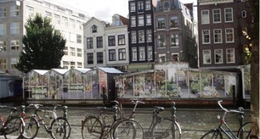 Another look at Amsterdam