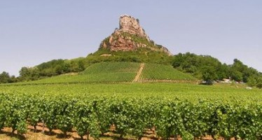 Valley of the vines: A wine tour of France