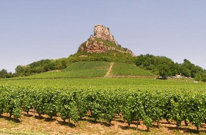 French Wine Valley