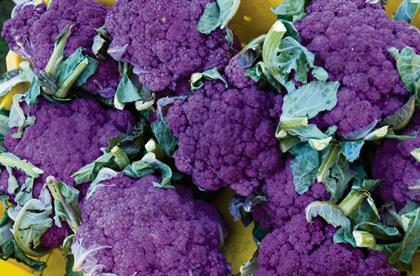Purple Sprouting Broccoli Recipe
