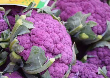 Purple Sprouting Broccoli Recipe