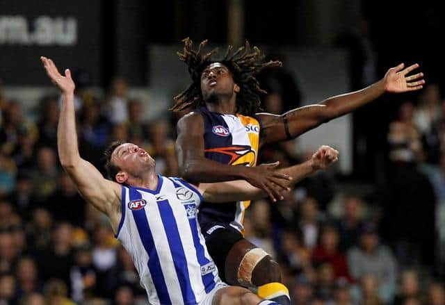 AFL WEST COAST NORTH MELBOURNE