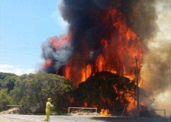 bushfire urban terrorism