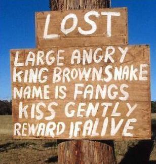 funny australia sign snake