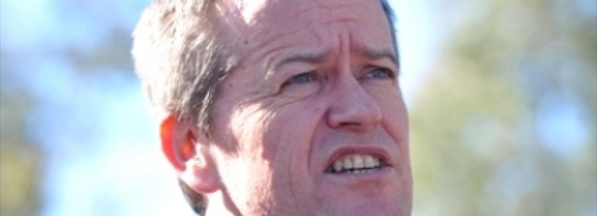 "Bill Shorten: rape allegation ""untrue and abhorrent"""