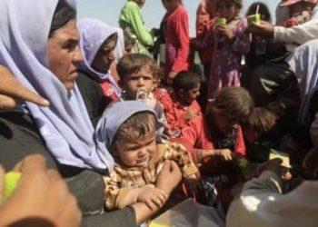 Iraq - Yazidi refugees