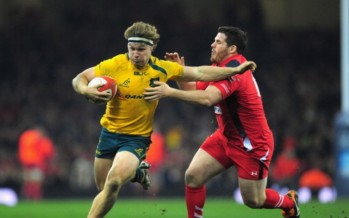 Rugby Autumn Internationals 2014 preview
