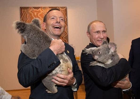 G20 - koalas - Abbott - Putin