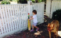 #putoutyourbats tribute sweeps nation grieving for Phil Hughes
