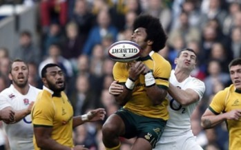 Woeful Wallabies: what now for the World Cup?