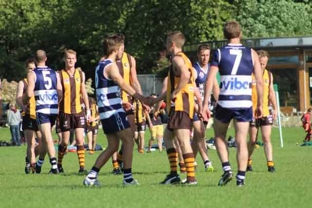 AFL London - Hawks vs Wildcats