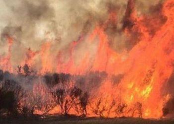 WA bushfires