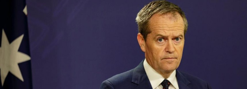 """At least I'm not a homophobe,"" Shorten tells Bernardi"