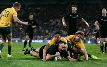 Watch: Highlights of the Wallabies vs All Blacks