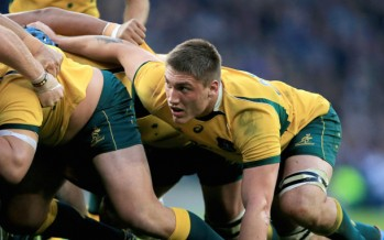 Wallabies vs Pumas in London: Argentina will be vicious but Aussies will be clinical