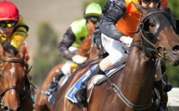 Melbourne Cup won by Almandin in thrilling finish
