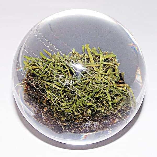 2016-lords-genuine-turf-glass-paperweight