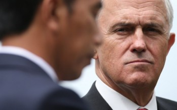 Coalition trails 45-55% and Turnbull's ratings sink in Newspoll