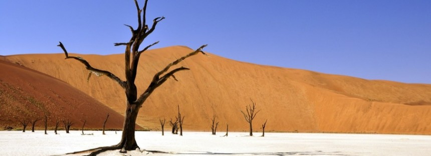 Hitting the captivating dunes of the Namib, the world's oldest desert