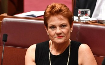 Malcolm Turnbull rounds on Pauline Hanson