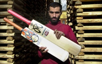 Bat size regulations and cricket in the US under review