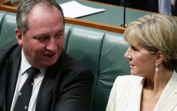 Govt in turmoil over Barnaby Joyce NZ citizenship, Bishop accuses Labor of collusion with Kiwis