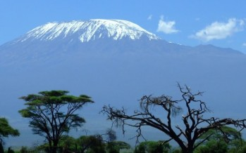 Climbing Kilimanjaro, the pride of Africa