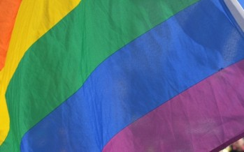 Same-sex marriage ballot participation rate passes Irish referendum