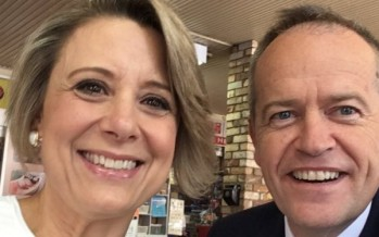 Former Labor premier Kristina Keneally to stand in Bennelong byelection, a major threat to Turnbull government