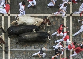 Image by San Fermin Pamplona - Navarra from Pixabay