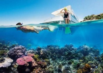 Great Barrier Reef - snorkling