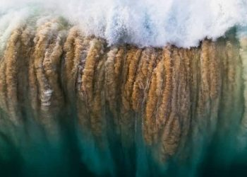 Detail from Reed Plummer's photograph Surge, in which a breaking wave drops tons of water even as it pulls tons of sand from the sea bed. (South Australian Museum)