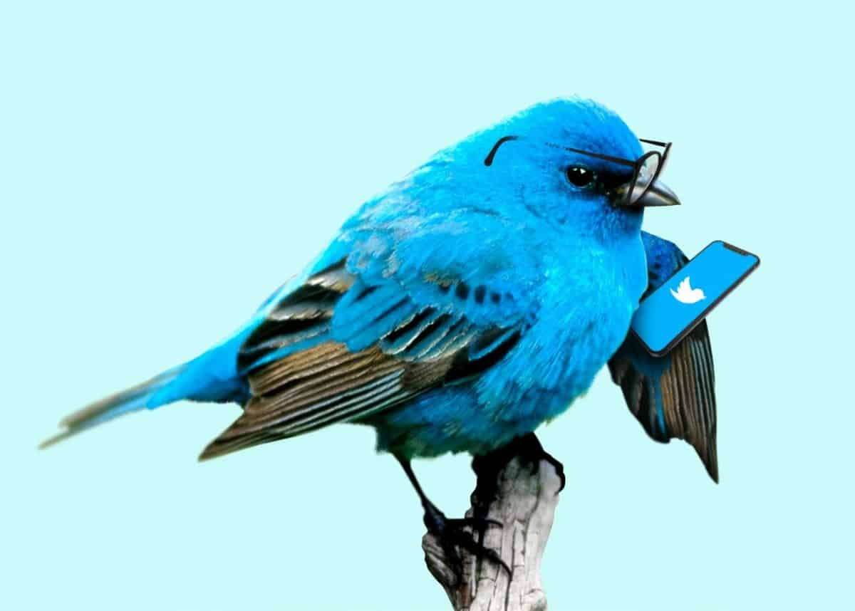 Anger is all the rage on Twitter