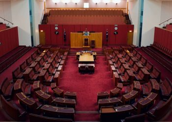Senate committees are one of the few bright spots