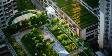 Greening our grey cities