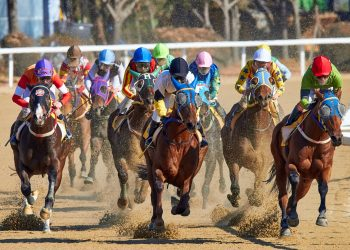 Countries with highest popularity for horse racing