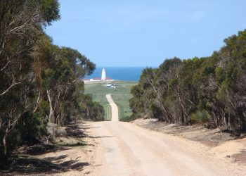 Cape Willoughby on Kangaroo Island, South Australia. Photo credit: Wikimedia Commons
