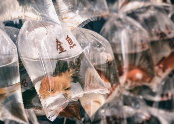 14 million tonnes of microplastics on the seafloor