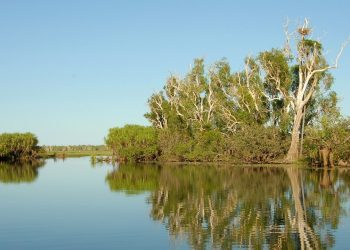 Kakadu National Park is one of the Territory's attractions that should soon be open to regional Victorians. Photo credit: Pixabay