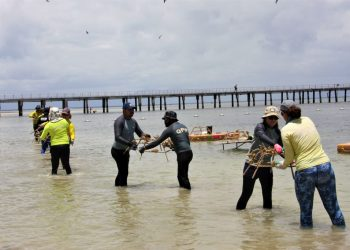 Building the Reef Stars and attaching coral on Green Island. Image credit © Commonwealth of Australia (GBRMPA)