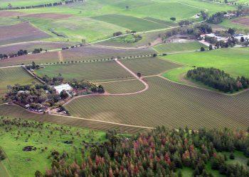 Barossa Valley wine-growing region, South Australia. Photo credit: Wikimedia Commons