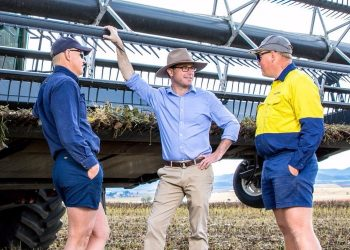 Agriculture Minister David Littleproud (centre) with Australian farmers in a PR photo released by the Federal government.