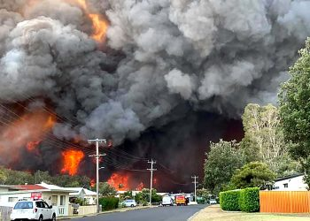 Generic photo of the Black Summer bushfires. Photo credit: Wikimedia Commons
