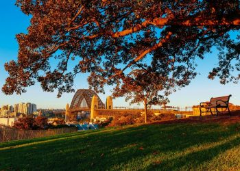 Fall in love with Sydney: Top places to visit in Autumn