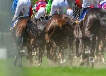 How to read the racecard in horse racing and how it can help you make more informed betting decisions