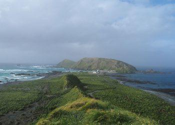 Macquarie Island. Photo by Krudller - Own work, CC BY-SA 4.0 via Wikimedia Commons